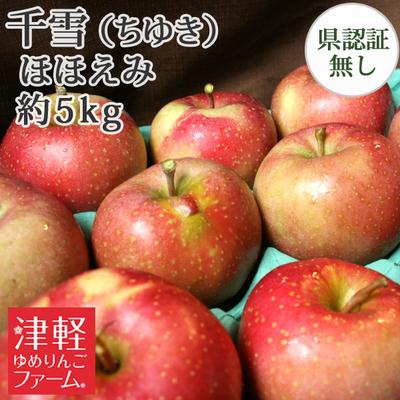 【送料無料】青森県産りんご 千雪 ほほえみ(訳あり)  約5kg(14-20個入)認証なし