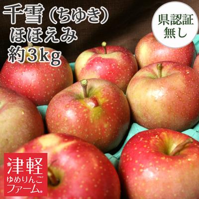 【送料無料】青森県産りんご 千雪 ほほえみ(訳あり)  約3kg(8-10個入)認証なし