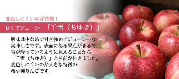青森県産 「千雪」 甘さと酸化しない果肉が特徴