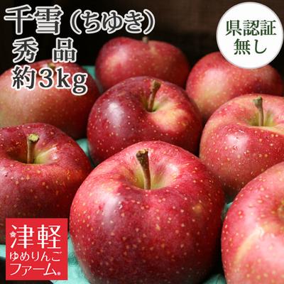【送料無料】青森県産りんご 千雪 秀品  約3kg(8-10個入)認証なし