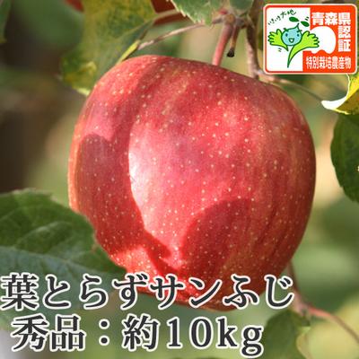 【送料無料】青森県産りんご 葉とらずサンふじ 秀品  約10kg(28-40個入) 青森県特別栽培農産物認証あり