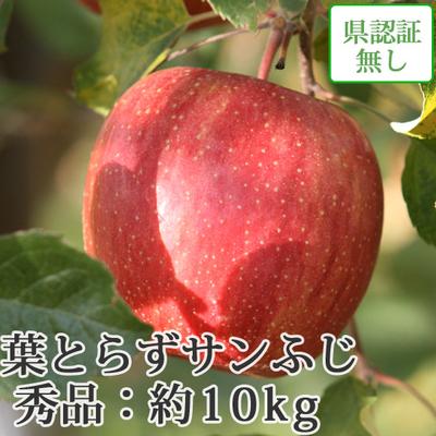 【送料無料】青森県産りんご 葉とらずサンふじ 秀品  約10kg(28-40個入) 認証なし