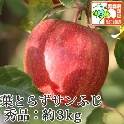 【送料無料】青森県産りんご 葉とらずサンふじ 秀品  約3kg(8-10個入) 青森県特別栽培農産物認証あり