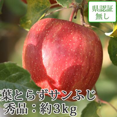 【送料無料】青森県産りんご 葉とらずサンふじ 秀品  約3kg(8-10個入) 認証なし