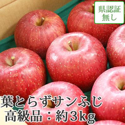 【送料無料】青森県産りんご 葉とらずサンふじ 高級品  約3kg(8-10個入) 認証なし