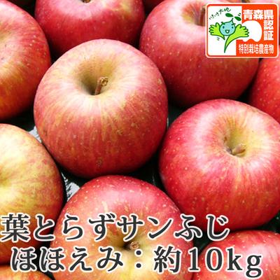 【送料無料】青森県産りんご 葉とらずサンふじ ほほえみ(訳あり)  約10kg(28-40個入) 青森県特別栽培農産物認証あり