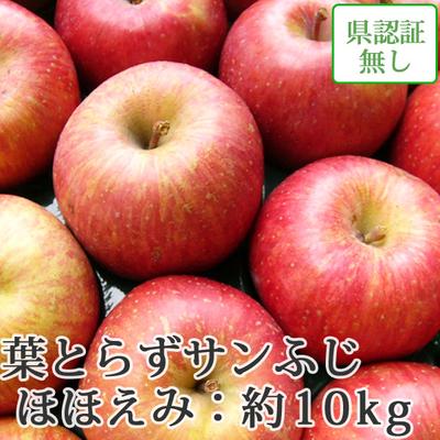 【送料無料】青森県産りんご 葉とらずサンふじ ほほえみ(訳あり)  約10kg(28-40個入) 認証なし
