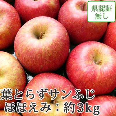 【送料無料】青森県産りんご 葉とらずサンふじ ほほえみ(訳あり)  約3kg(8-10個入) 認証なし
