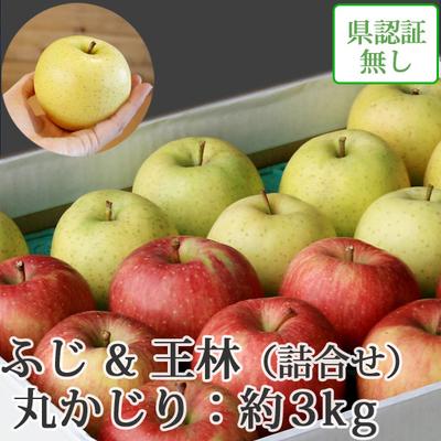 【送料無料】青森県産りんご 王林&葉とらずサンふじ 詰合せ 丸かじり(小さめサイズ)  約3kg(11-13個入) 認証なし