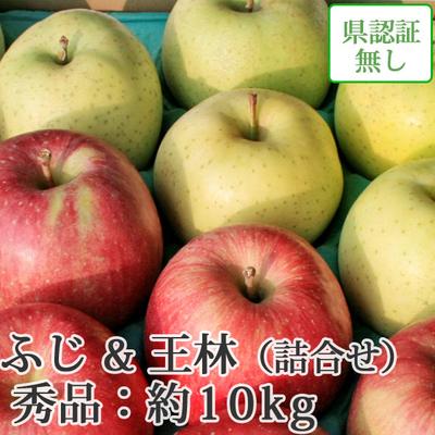 【送料無料】青森県産りんご 王林&葉とらずサンふじ 詰合せ 秀品  約10kg(28-40個入)認証なし