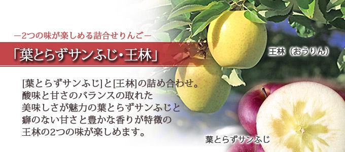 葉とらずサンふじと王林の2つの味が楽しめる「詰め合わせりんご」