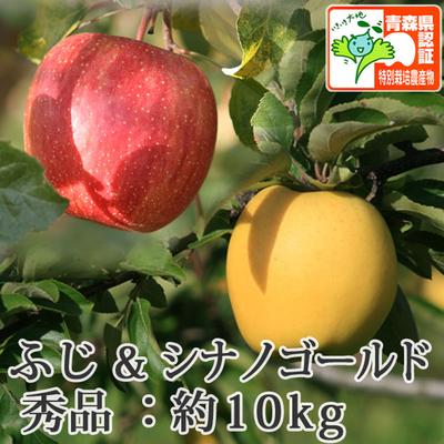 【送料無料】青森県産りんご シナノゴールド&葉とらずサンふじ 詰合せ 秀品  約10kg(28-40個入) 青森県特別栽培農産物認証あり