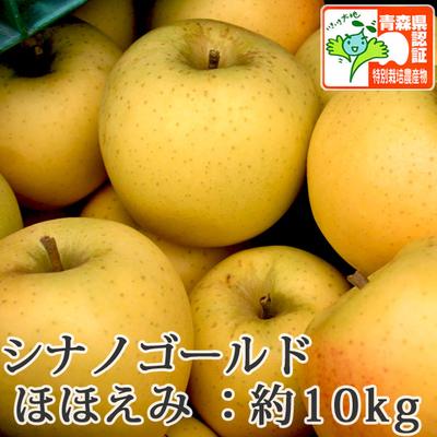 【送料無料】青森県産りんご シナノゴールド ほほえみ(訳あり)  約10kg(28-40個入) 青森県特別栽培農産物認証あり