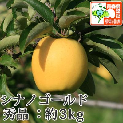 【送料無料】青森県産りんご シナノゴールド 秀品  約3kg(8-10個入) 青森県特別栽培農産物認証あり