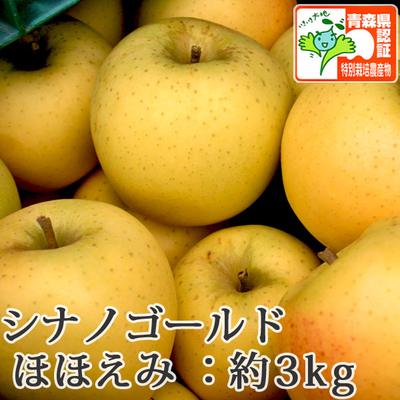 【送料無料】青森県産りんご シナノゴールド ほほえみ(訳あり)  約3kg(8-10個入) 青森県特別栽培農産物認証あり