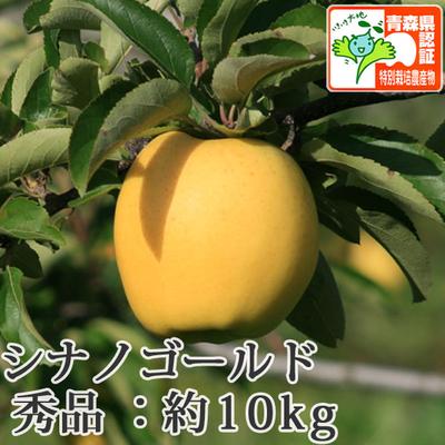 【送料無料】青森県産りんご シナノゴールド 秀品  約10kg(28-40個入) 青森県特別栽培農産物認証あり