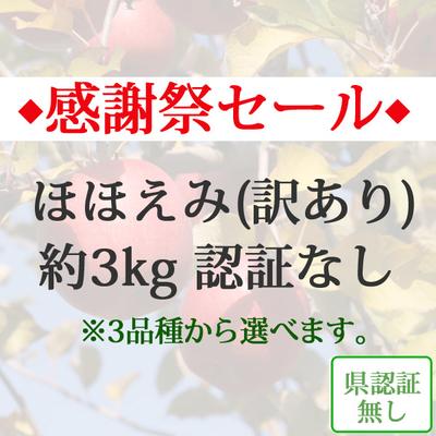 【感謝祭セール】青森県産りんご ほほえみ(訳あり)  約3kg(8-10個入) 認証なし