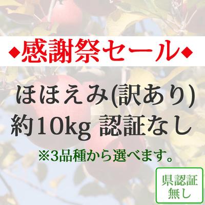 【感謝祭セール】青森県産りんご ほほえみ(訳あり)  約10kg(28-40個入) 認証なし