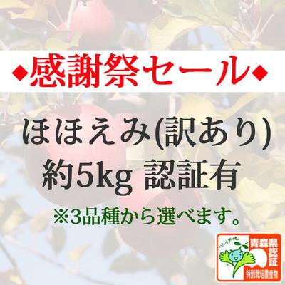 【感謝祭セール】青森県産りんご ほほえみ(訳あり)  約5kg(14-20個入) 青森県特別栽培農産物認証あり