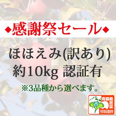 【感謝祭セール】青森県産りんご ほほえみ(訳あり)  約10kg(28-40個入) 青森県特別栽培農産物認証あり