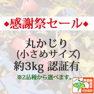 【感謝祭セール】青森県産りんご 丸かじり(小さめサイズ)  約3kg(11-13個入) 青森県特別栽培農産物認証あり