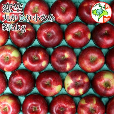 【送料無料】青森県産りんご 恋空 丸かじり  約5kg(23-28個入) 青森県特別栽培農産物認証あり