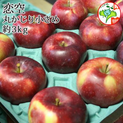 【送料無料】青森県産りんご 恋空 丸かじり  約3kg(12-14個入) 青森県特別栽培農産物認証あり