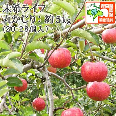 【送料無料】青森県産りんご 未希ライフ 丸かじり  約5kg(20-28個入) 青森県特別栽培農産物認証あり