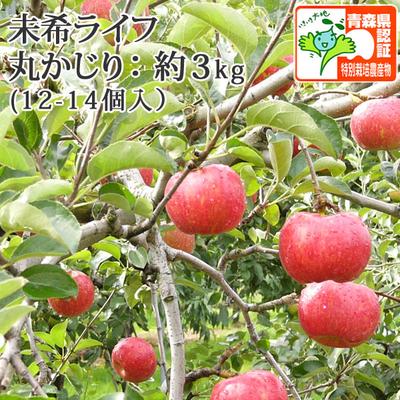 【送料無料】青森県産りんご 未希ライフ 丸かじり  約3kg(12-14個入) 青森県特別栽培農産物認証あり