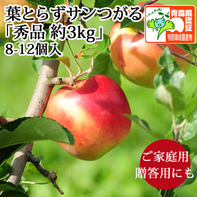 【送料無料】青森県産りんご 葉とらずサンつがる 秀品  約3kg(8-12個入) 青森県特別栽培農産物認証あり