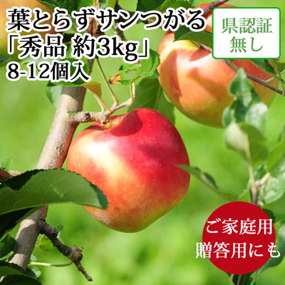 【送料無料】青森県産りんご 葉とらずサンつがる 秀品  約3kg(8-12個入) 認証なし