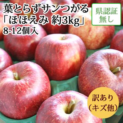 【送料無料】青森県産りんご 葉とらずサンつがる ほほえみ(訳あり・キズ有)  約3kg(8-12個入) 認証なし