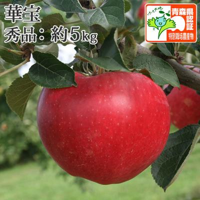 【送料無料】青森県産りんご 華宝(かほう) 秀品  約5kg(14-20個入) 青森県特別栽培農産物認証あり