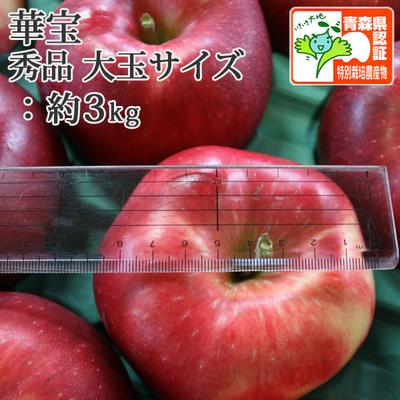 【送料無料】青森県産りんご 華宝(大玉サイズ) 秀品  約3kg(5-7個前後) 青森県特別栽培農産物認証あり