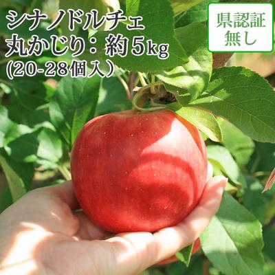 【送料無料】青森県産りんご シナノドルチェ 丸かじり(小玉サイズ)  約5kg(20-28個入) 認証なし