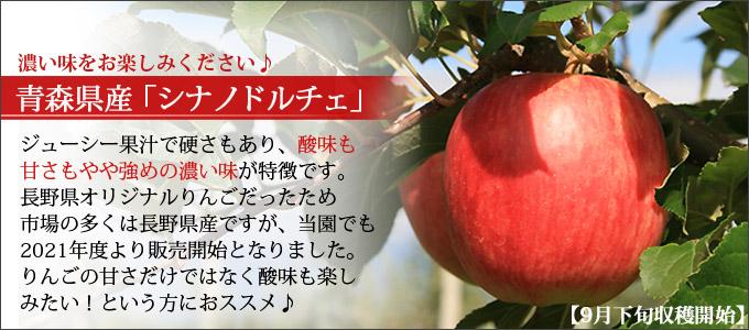 シナノドルチェ 青森県産 希少品種