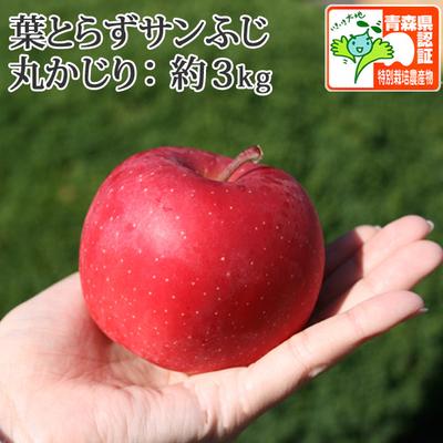 【送料無料】青森県産りんご 葉とらずサンふじ 丸かじり(小さめサイズ) 約3kg(11-13個入) 認証有