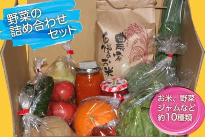 野菜の詰め合わせセット【AYAKOファーム】