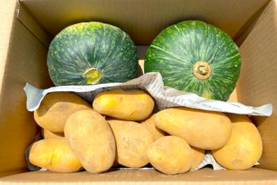 春馬鈴薯×えびすかぼちゃ 詰め合わせ【うーぞの農園】