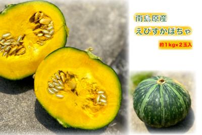 えびすかぼちゃ 2玉入【うーぞの農園】