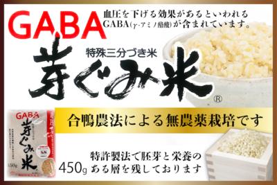 GABA芽ぐみ米450g(長崎県 ヒノヒカリ)【ながさき南部生産組合】