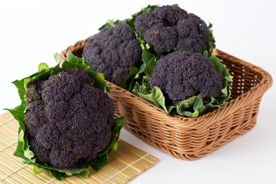 【期間商品】カリフラワー紫 2個(約1,800g)