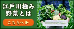 江戸川極み野菜とは