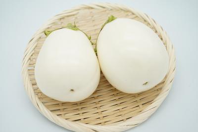 【期間商品】歯が要らない柔らかさ!イタリアのナス「ホワイトベル2」2個(約500g)