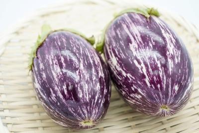 【期間商品】ステーキで食べたい!イタリアのナス「アレキサンドラ」2個(約500g)