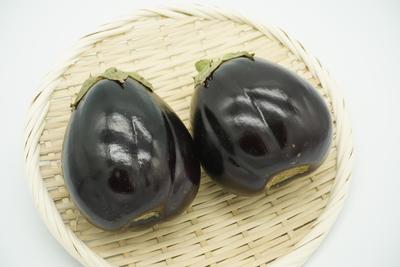 【期間商品】オリーブオイルの恋人♡イタリアのナス「ロッサビアンコ」2個(約500g)