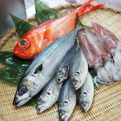 内容おまかせ!鮮魚セット(3種以上)