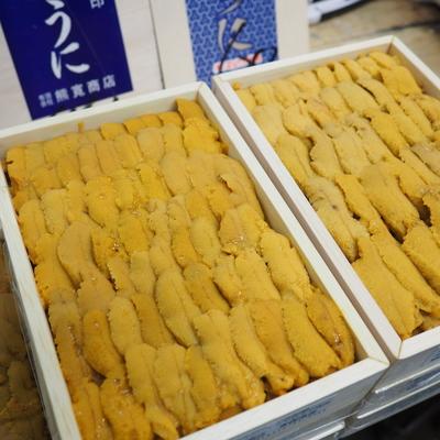 生うに(キタムラサキウニ)【国産・弁当箱・A品】約250g入り