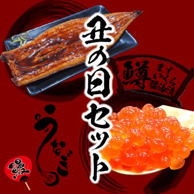 【丑の日セットC】特大うなぎ蒲焼き2枚・いくら醤油漬け250g
