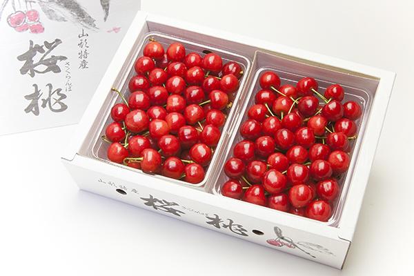 佐藤錦 特選 バラパック 大玉 約500g×2